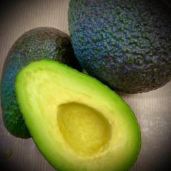 2 Avocats bio -