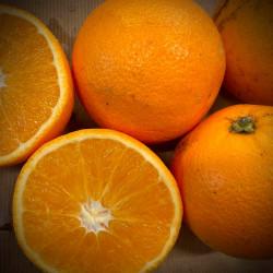 Oranges bio - au Kg