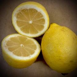 Citron jaunes bio - la...